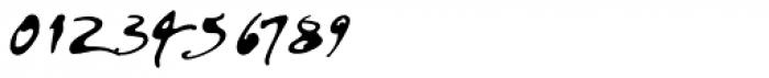 PF DaVinci Script Pro Inked Font OTHER CHARS