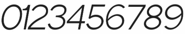 Phoenix Italic Light otf (300) Font OTHER CHARS