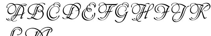 Phyllis Initials Standard D Font UPPERCASE
