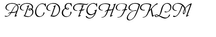 Phyllis Standard D Font UPPERCASE