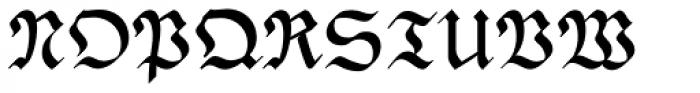 PhederFrack Bold Font UPPERCASE