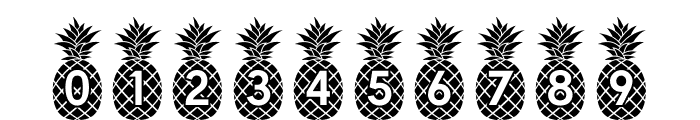 Pineapple_Mono Font OTHER CHARS