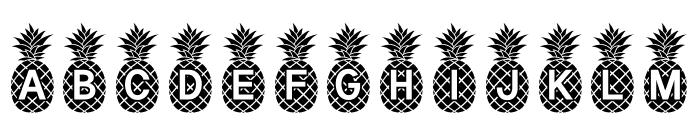 Pineapple_Mono Font LOWERCASE