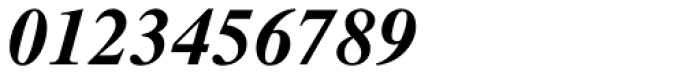 PIXymbols Fractions Bold Italic Font OTHER CHARS