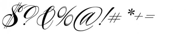 Piel Script Font OTHER CHARS