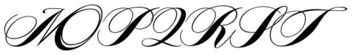 Piel Script Font UPPERCASE
