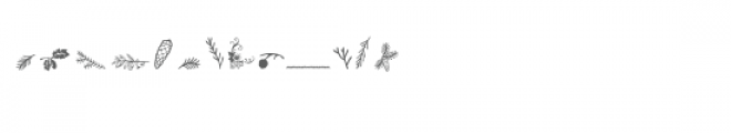 pine cones and conifers dingbats Font LOWERCASE