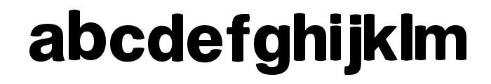 PLZ Font LOWERCASE