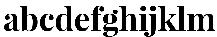 Playfair Display Bold Font LOWERCASE