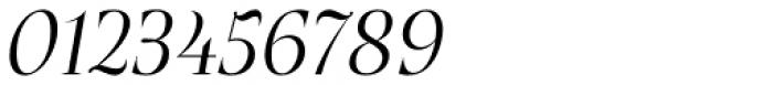 Plaisir Light Italic Font OTHER CHARS
