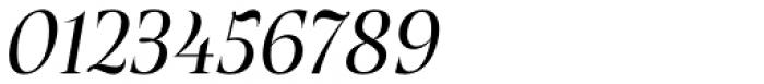 Plaisir Regular Italic Font OTHER CHARS