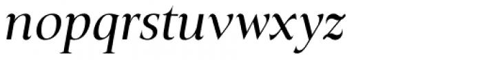 Plaisir Regular Italic Font LOWERCASE