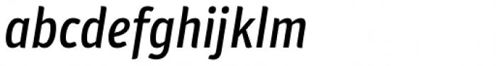 Plantago Condensed Medium Italic Font LOWERCASE