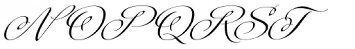 Platinus Script Pro Bold Font UPPERCASE