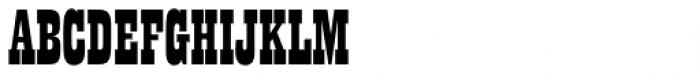 Playbill Pro Regular Font UPPERCASE