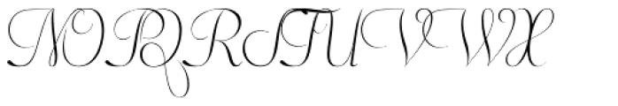 Pluma Primeyra Font UPPERCASE