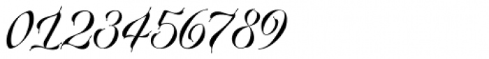 Plumage Regular Font OTHER CHARS