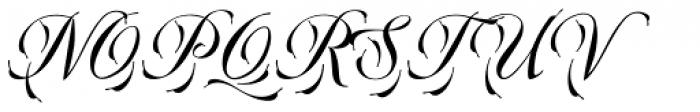 Plumage Regular Font UPPERCASE