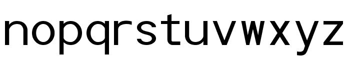 POE Monospace Font LOWERCASE