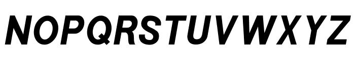 POE Sans New Bold Italic Font UPPERCASE