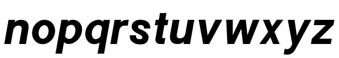 POE Sans New Bold Italic Font LOWERCASE