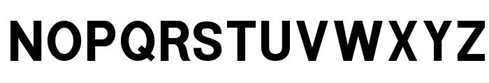 POE Sans New Bold Font UPPERCASE