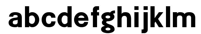POE Sans New Bold Font LOWERCASE