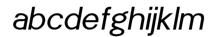 POE Sans New Italic Font LOWERCASE