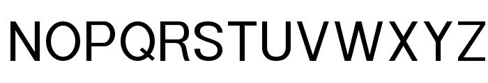 POE Sans New Font UPPERCASE