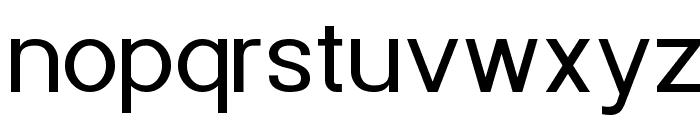 POE Sans New Font LOWERCASE