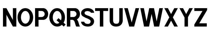 POE Sans Pro Bold Font UPPERCASE