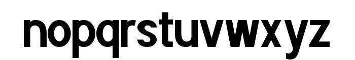 POE Sans Pro Condensed Bold Font LOWERCASE