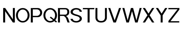 POE Sans Pro Expanded Font UPPERCASE