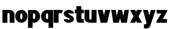 POE Sans Pro Heavy Font LOWERCASE