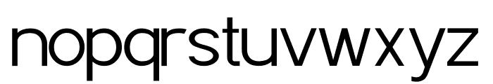 POE Sans Pro Light Font LOWERCASE