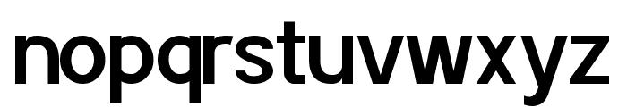 POE Sans Pro Semi-bold Font LOWERCASE
