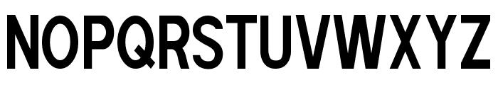 POE Sans Pro Ultra-Condensed Bold Font UPPERCASE