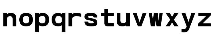 POE Vetica Monospace Bold Font LOWERCASE
