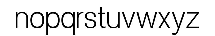POE Vetica New Light Font LOWERCASE