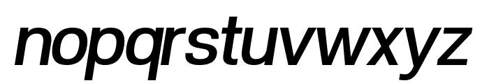 POE Vetica New Medium Italic Font LOWERCASE