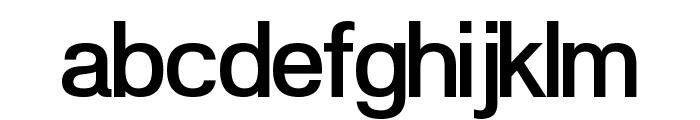 POE Vetica New Medium Font LOWERCASE