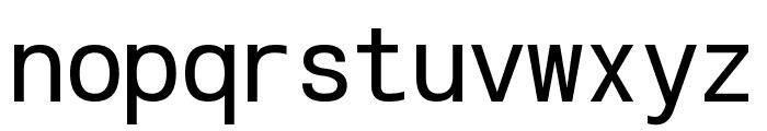 POE Vetica New Mono Font LOWERCASE