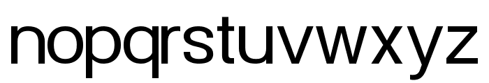 POE Vetica UI Font LOWERCASE