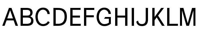 Polt Font UPPERCASE