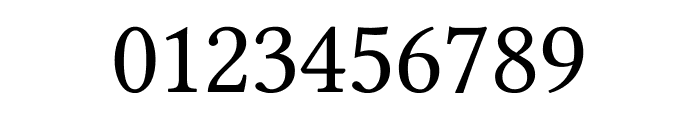 Ponomar Unicode TT Font OTHER CHARS