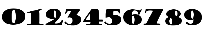 Porter Regular Font OTHER CHARS