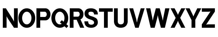 Powerhouse Sans Bold Font UPPERCASE