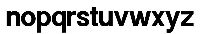 Powerhouse Sans Bold Font LOWERCASE
