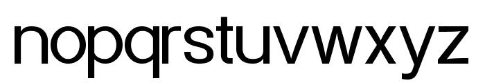 Powerhouse Sans Font LOWERCASE