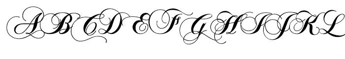 Polonaise Bold Font UPPERCASE